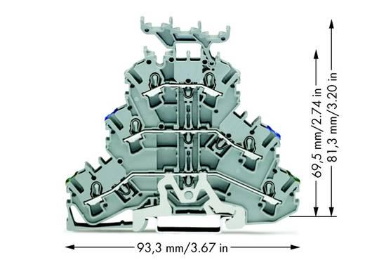 Aardklem 3-etages 5.20 mm Veerklem Toewijzing: Terre, N, L Grijs WAGO 2002-3247 50 stuks
