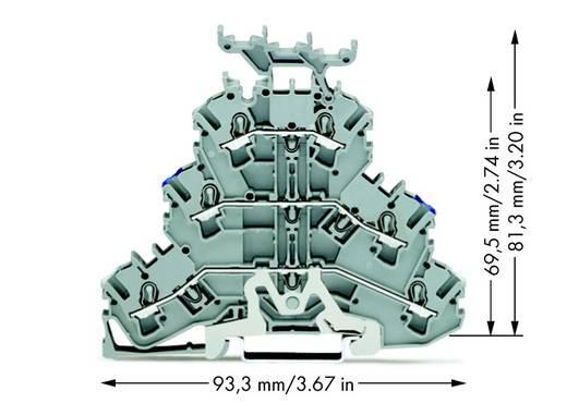 Doorgangsklem 3-etages 5.20 mm Veerklem Toewijzing: N, L Grijs WAGO 2002-3248 50 stuks