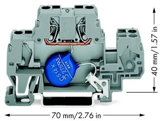 Aderklem 10 mm Veerklem Toewijzing: L Grijs WAGO 870-523/281-582 25 stuks