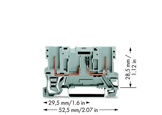 Diodeklem 5 mm Veerklem Grijs WAGO 769-228/281-411 100 stuks