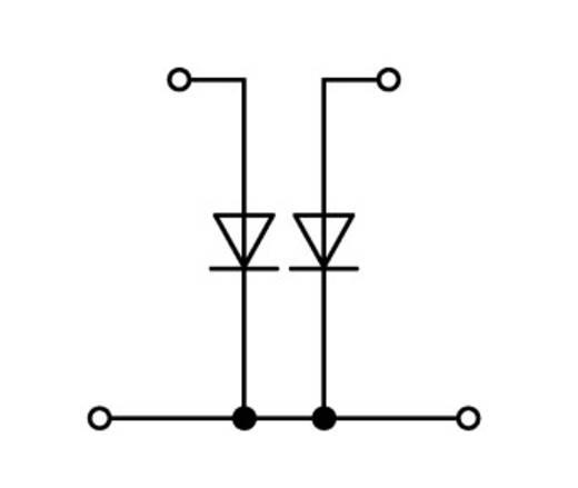 Diodeklem 2-etages 5 mm Veerklem Toewijzing: L Grijs WAGO 870-542/281-488 50 stuks