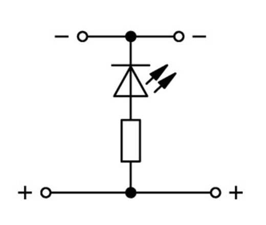 LED-klem 2-etages 5 mm Veerklem Toewijzing: L Grijs WAGO 870-543/281-434 50 stuks