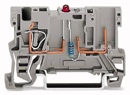 Basisklem 5 mm Veerklem Toewijzing: L Grijs WAGO 769-239/281-434 100 stuks