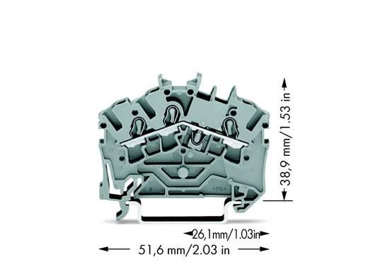 Doorgangsklem 5.20 mm Veerklem Toewijzing: L Grijs WAGO 2002-6301 100 stuks