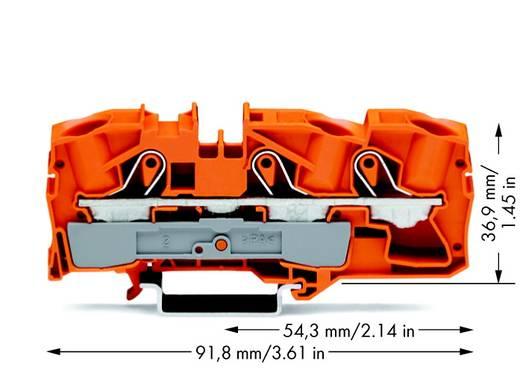 Doorgangsklem 12 mm Veerklem Oranje WAGO 2016-1302 20 stuks