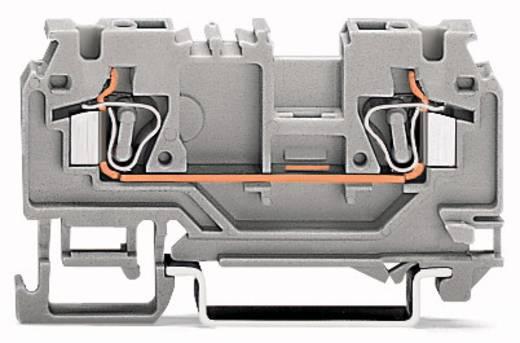 Doorgangsklem 5 mm Veerklem Oranje WAGO 880-902/999-940 100 stuks