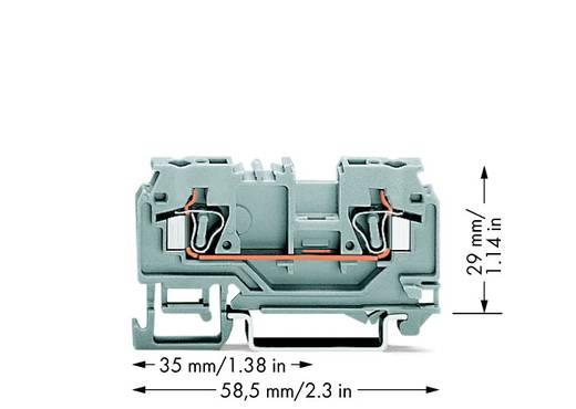 Doorgangsklem 5 mm Veerklem Toewijzing: L Grijs WAGO 880-901 100 stuks