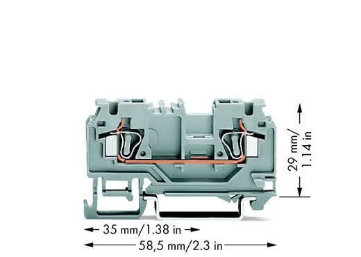 Doorgangsklem 5 mm Veerklem Toewijzing: L Grijs WAGO 880-901/999-940 100 stuks