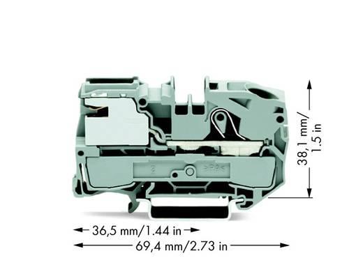 Potentiaalklem 12 mm Veerklem Grijs WAGO 2016-7111 25 stuks