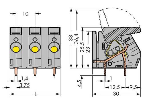 Veerkachtklemblok 6.00 mm² Aantal polen 5 WAGO Grijs 25 stuks