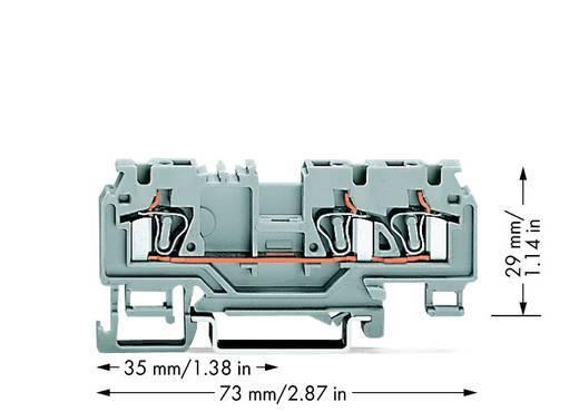 Doorgangsklem 5 mm Veerklem Toewijzing: L Grijs WAGO 880-681/999-940 100 stuks