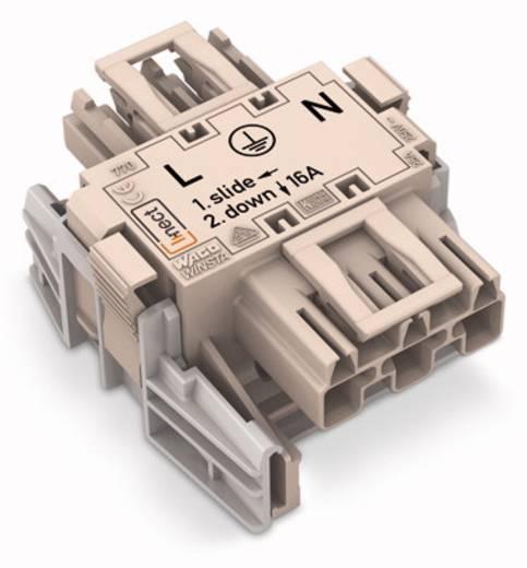 WAGO 770-6223 Netvoeding Netstekker - Netbus Totaal aantal polen: 3 Wit 25 stuks
