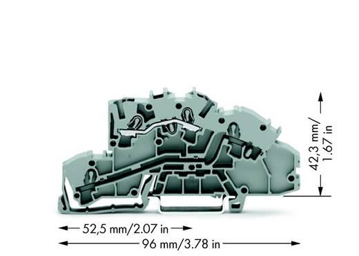Installatie-etageklem 5.20 mm Veerklem Toewijzing: L Grijs WAGO 2003-7650 50 stuks
