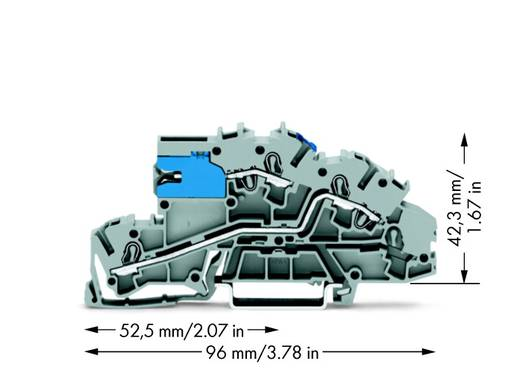 Installatie-etageklem 5.20 mm Veerklem Toewijzing: NT, L Grijs WAGO 2003-7640 50 stuks