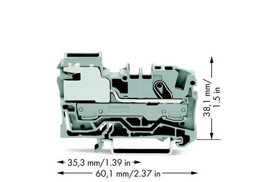 Potentiaalklem 7.50 mm Veerklem Grijs WAGO 2006-7111 50 stuks