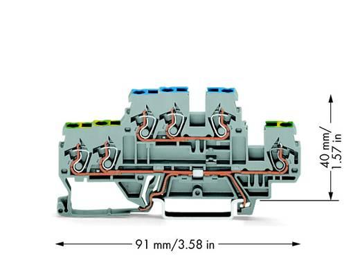 Aardklem 2-etages 5 mm Veerklem Toewijzing: Terre, N Grijs WAGO 870-535 50 stuks