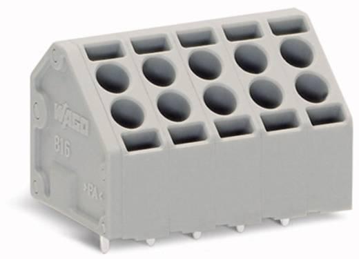 Veerkachtklemblok 1.50 mm² Aantal polen 12 816-112 WAGO Grijs 56 stuks