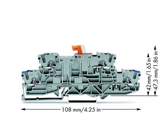 Scheidingsklem 2-etages 5.20 mm Veerklem Toewijzing: N, L Grijs WAGO 2002-2972 50 stuks