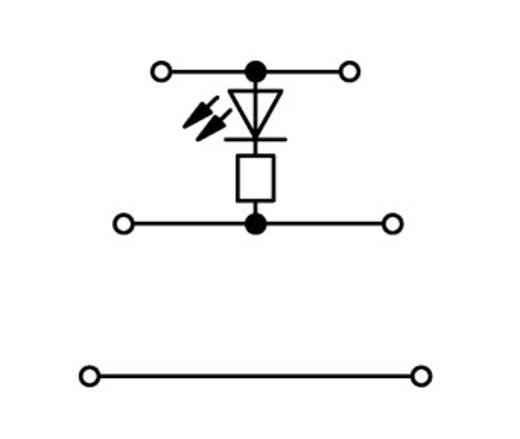 LED-klem 3-etages 5 mm Veerklem Toewijzing: L Grijs WAGO 870-593/281-413 50 stuks