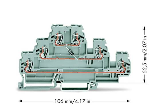 Diodeklem 3-etages 5 mm Veerklem Toewijzing: L Grijs WAGO 870-590/281-410 50 stuks