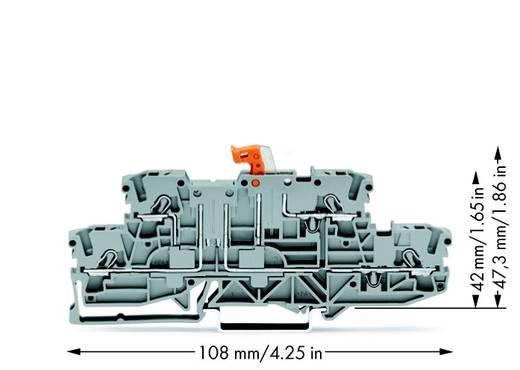 Scheidingsklem 2-etages 5.20 mm Veerklem Toewijzing: L, L Grijs WAGO 2002-2971 50 stuks