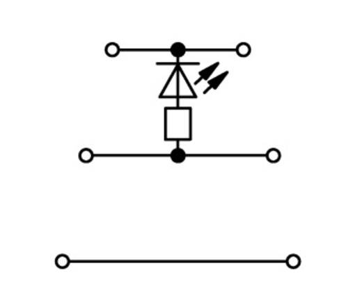 LED-klem 3-etages 5 mm Veerklem Toewijzing: L Grijs WAGO 870-593/281-434 50 stuks