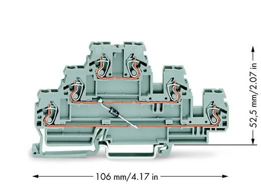 Diodeklem 3-etages 5 mm Veerklem Toewijzing: L Grijs WAGO 870-590/281-675 50 stuks