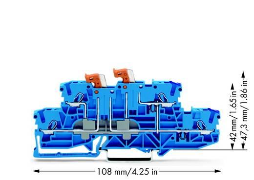 Scheidingsklem 2-etages 5.20 mm Veerklem Toewijzing: N, N Blauw WAGO 2002-2959 50 stuks