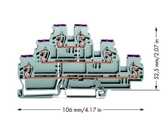 Doorgangsklem 3-etages 5 mm Veerklem Toewijzing: L Grijs WAGO 870-556 50 stuks