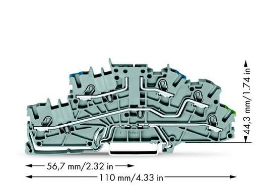Installatie-etageklem 5.20 mm Veerklem Toewijzing: N, L, Terre Grijs WAGO 2003-6640 50 stuks
