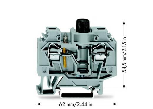 Zekeringsklem 13 mm Veerklem Toewijzing: L Grijs WAGO 282-124 40 stuks