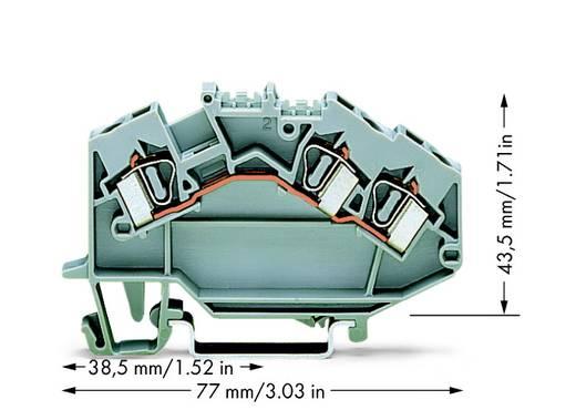 Doorgangsklem 6 mm Veerklem Toewijzing: L Grijs WAGO 781-631 50 stuks