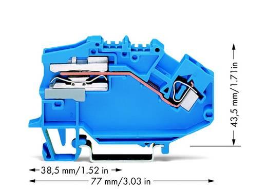 Scheidingsklem 6 mm Veerklem Toewijzing: N Blauw WAGO 781-613 50 stuks