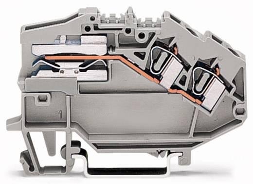 Scheidingsklem 6 mm Veerklem Toewijzing: L Grijs WAGO 781-653 50 stuks
