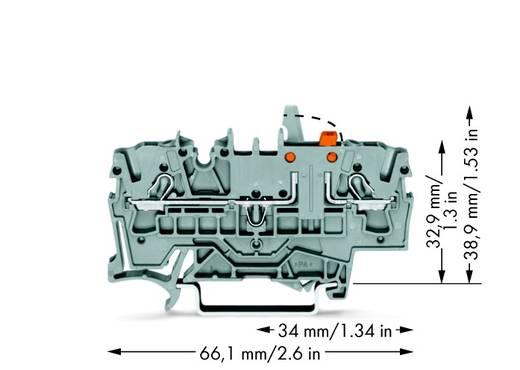 Scheidingsklem 5.20 mm Veerklem Grijs WAGO 2002-1671/401-000 50 stuks