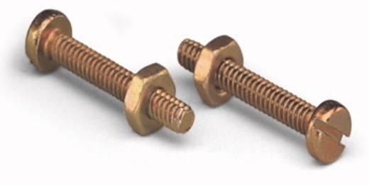 WAGO 231-495 Cilinderschroef Inhoud: 200 stuks