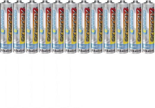 Conrad energy LR03 AAA batterij (potlood) Alkaline (Alkali-mangaan) 1.5 V 12 stuks