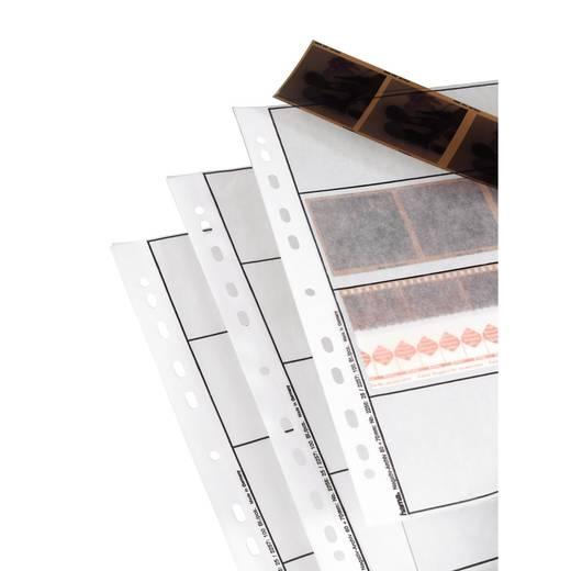 Negatief Bladen, pergamijn
