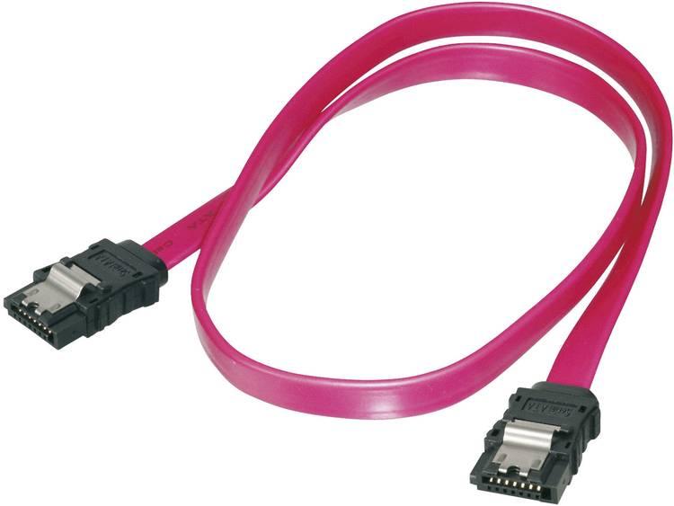 Harde schijf Kabel [1x SATA-bus 7-polig - 1x SATA-bus 7-polig] 0.75 m Rood Digitus