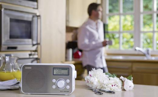 DAB+ Transistorradio Sony XDR-S60 AUX, DAB+, FM Wit