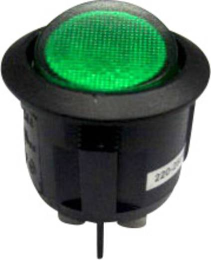 SCI R13-244B-02 B/G 220 V/AC Wipschakelaar 250 V/AC 10 A 2x uit/aan vergrendelend 1 stuks