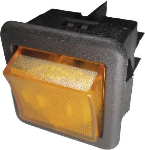 SCI R13-105B-01 B/Y Wipschakelaar 250 V/AC 10 A 1x uit/aan vergrendelend 1 stuks