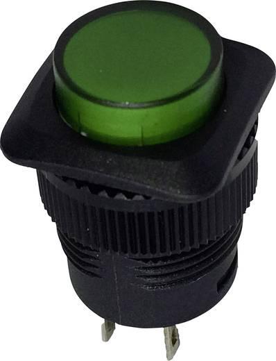 SCI R13-508A-05GN Druktoets 250 V/AC 1.5 A 1x uit/(aan) schakelend 1 stuks