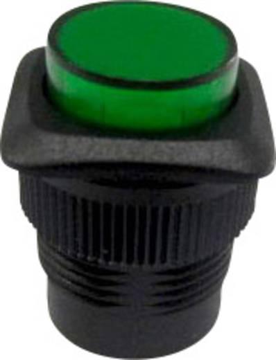 SCI R13-508B-05GN Drukschakelaar 250 V/AC 1.5 A 1x uit/aan vergrendelend 1 stuks