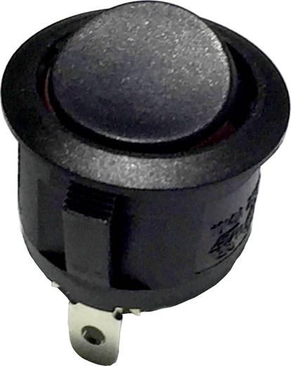 R13-112A2 B/B/R Wipschakelaar 250 V/AC 6 A 1x uit/aan vergrendelend 1 stuks