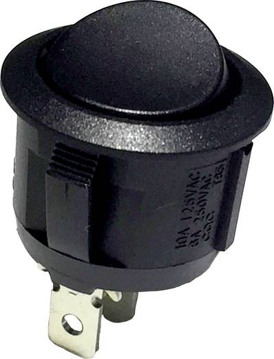 R13-112G B/B Wipschakelaar 250 V/AC 6 A 1x aan/(aan) schakelend 1 stuks