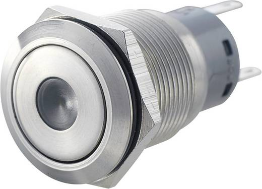 LAS1-AGQ-11D, GN Vandalismebestendige druktoets 250 V/AC 5 A 1x aan/(aan) IP67 schakelend 1 stuks