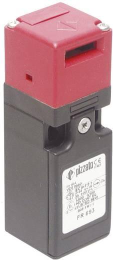 Pizzato Elettrica FR 993-M2 Veiligheidsschakelaar 250 V/AC 6 A Gescheiden bediening schakelend IP67 1 stuks