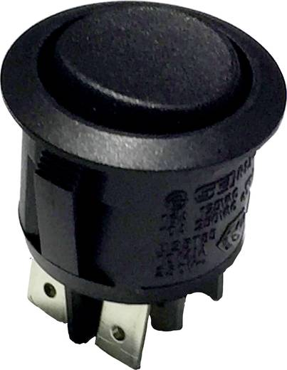 R13-244D B/B Wipschakelaar 250 V/AC 8 A 2x aan/uit/aan vergrendelend/0/vergrendelend 1 stuks