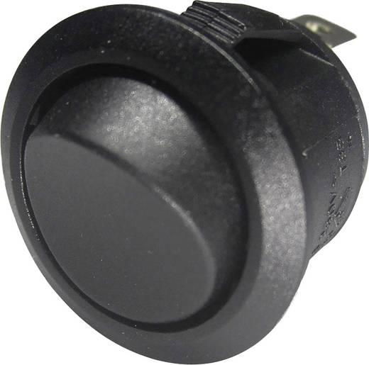 SCI 28430C607 Wipschakelaar 250 V/AC 6 A 1x aan/aan vergrendelend 1 stuks